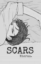 Scars | Levi x Reader fanfic by Nieruu