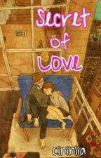 Secret Of Love by cininlia