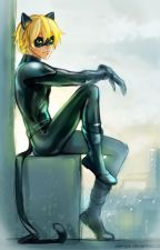 Cat Noir One Shots! by theaudreygermain
