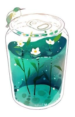 [KookGa]: Summer Soda