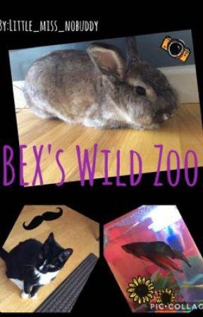 BEX's Wild Zoo by Little_miss_nobuddy