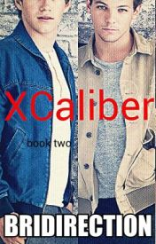 XCaliber BOOK TWO *ON HOLD* by Bridirection