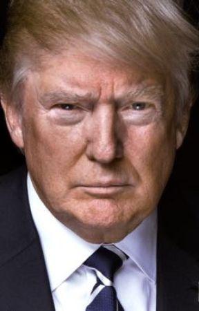 Politics: A Look Back On 2016 by QuestingWeston