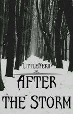 After The Storm by LittleNekii