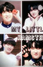 My Little Hamster [seoksoon] by sksn4lyfe