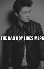The bad boy likes me?!? by Paradisethecreator