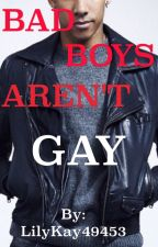 Bad Boys Aren't Gay by LilyKay49453