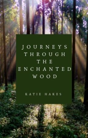 Journeys Through The Enchanted Wood by KatieHakes