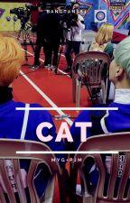 CAT. [yoonmin] by __goalsJiminGirl