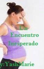 Un Encuentro Inesperado (Saga ENCUENTROS #1) by YashMarie