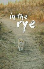 In The Rye ✱ Warriors Short Story by Flame_Clan