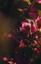 L'Ombre du Jour by rosaliereidbrock