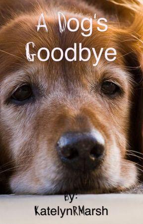A Dog's Goodbye by KatelynMarsh