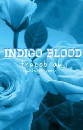 indigo blood • tracob au by ashleysflowers