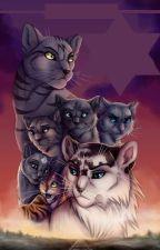Warrior cats: Der versteckte Sohn (Band 1 und 2) by WarriorCatsStorys_1