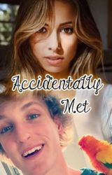 Accidentally Met // a Layla fanfic by too_sour