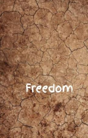Freedom by Anniebev12
