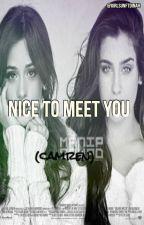 Nice To Meet You (CAMREN) by GirlsunFTDinah