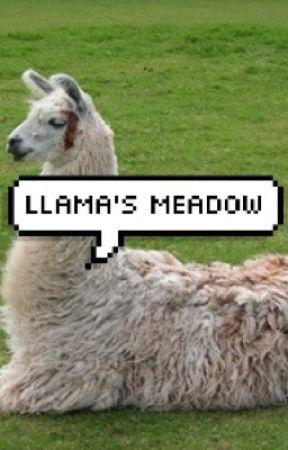 Llama's Meadow by -shayvanburen