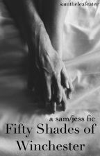 Fifty Shades of Winchester by samtheleafeater