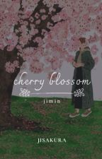 cherry blossom   pjm ✔ by jisakura