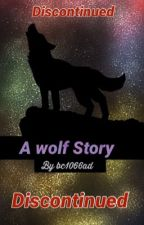 My wolf story by BC1066AD