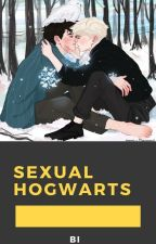 Sexual Hogwarts|| OS Drarry  by Stylinson_78_93