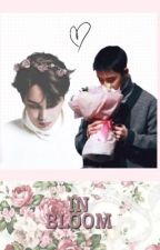 In Bloom | Kaisoo by theywontknow