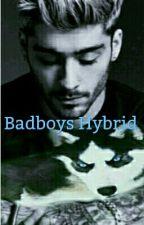Badboys Hybrid // Ziall by lourana2