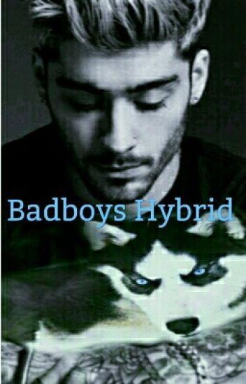 Badboys Hybrid