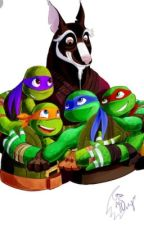 Tmnt x Reader ~Your Choices~ by shybabylovestmnt