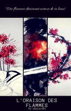 Ninja No Sekai : Kaemon's Journey by Akaracthe