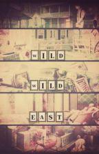The Worst Cop: Wild Wild East by absinthestorm