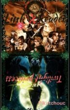 [Twilight Princess. (Link x Reader)]         Crépuscule by Pikatchouc