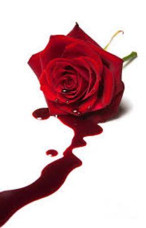 A Dying Rose by TsubakiKuro666