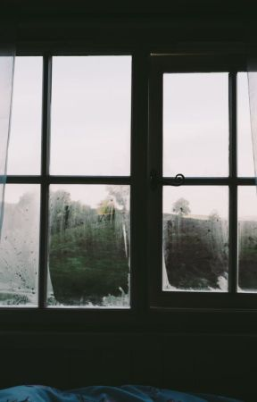 Window by -Nikku-