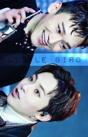 |Little Bird| by DucklingKyungsoo