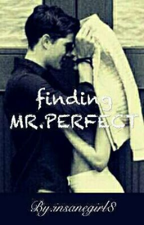 finding MR.PERFECT by insanegirl8