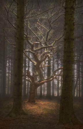 The Unknown Secrets by LyricaElov