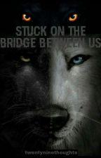 Stuck On The Bridge Between Us by salshabillanada
