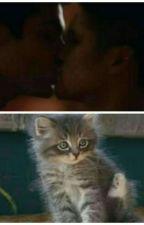 Innamorato del mio gatto  by annazanbardino