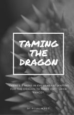 Taming the Dragon |  Rosalia Red by RosaliaRed