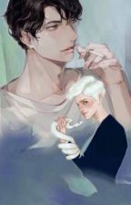 [HP] Sự cố hay cố sự? - Quyển hai: Sự cố. by Dao_Ho_Team