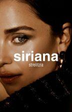 Siriana | Steve Rogers by cinettemoon