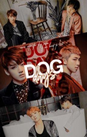 dog days ↯ bts by suck-up