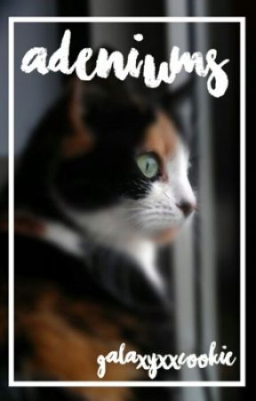 adeliums ⋆ warrior cat one-shots by GalaxyXxCookie