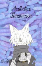 Aesthetics; Funamusea by pornovenezolano