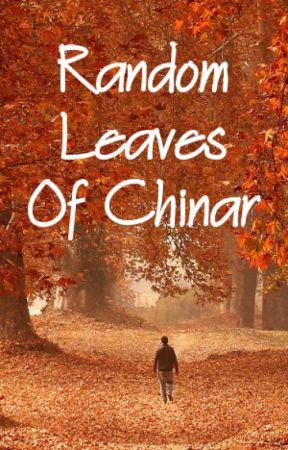 Random Leaves of Chinar by azadkashur