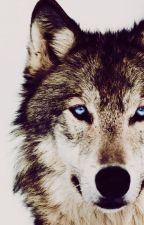 The Wolf side of me by esprit_renoi