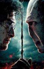 Harry Potter anketi  by 11potterhead13
